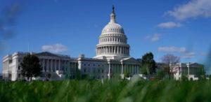 Cámara de Representantes aprobó legislación para descriminalizar el cannabis