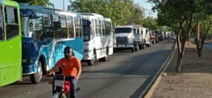 Escasez de gasoil afecta el transporte público en Punto Fijo