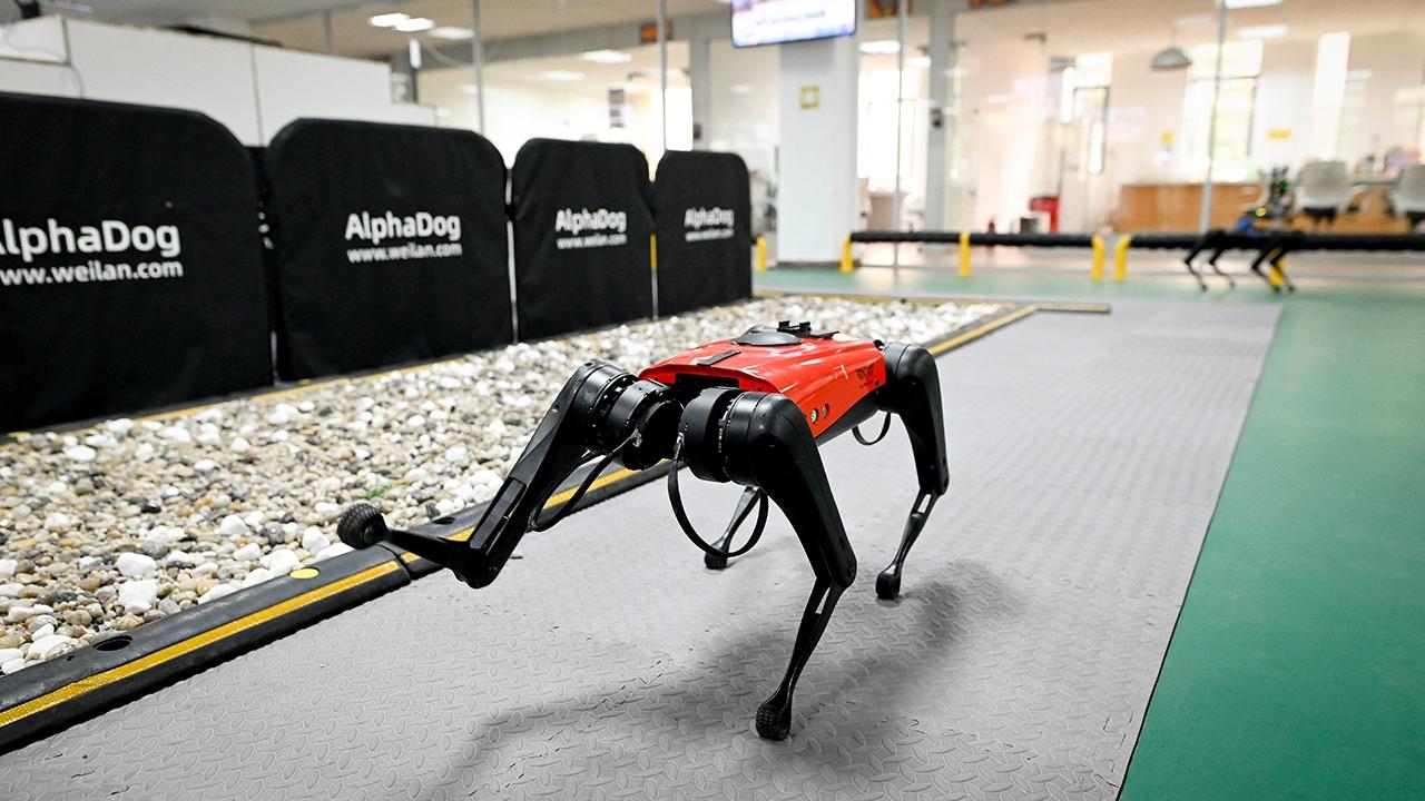No ladra ni muerde: Conozca el nuevo perro-robot chino