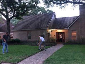 Enorme tigre suelto causó pánico en un vecindario de Texas