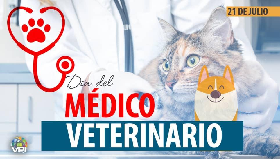 Médico Veterinario
