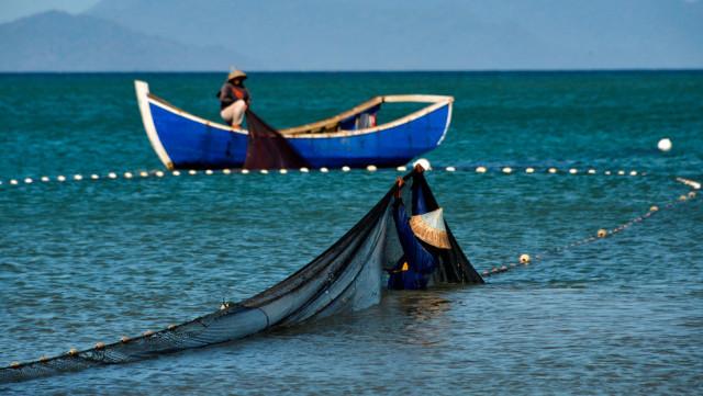 Sucre pescadores
