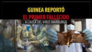 Virus de Marburgo: ¿Qué es y cómo llegó a Guinea?