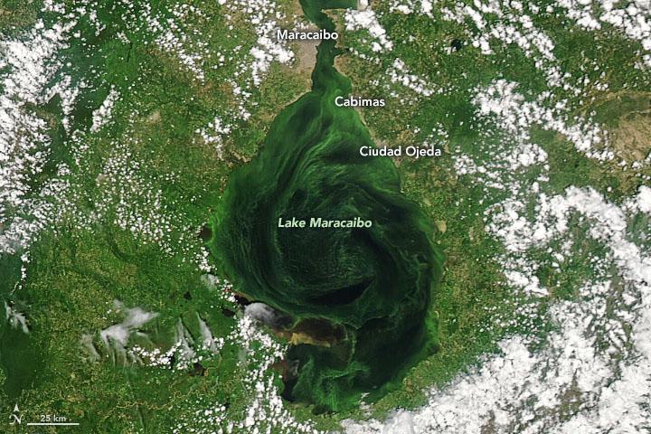 Imagen satelital del Observatorio de la Tierra de la NASA.