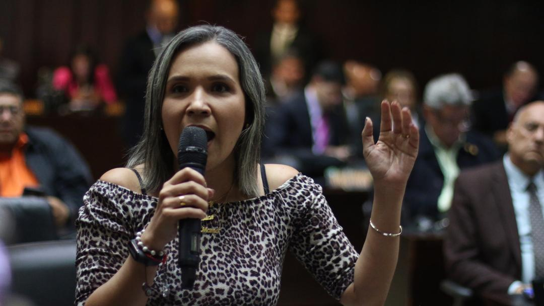 Dip. Karim Vera denunció que Táchira padece de hasta 20 horas sin servicio eléctrico