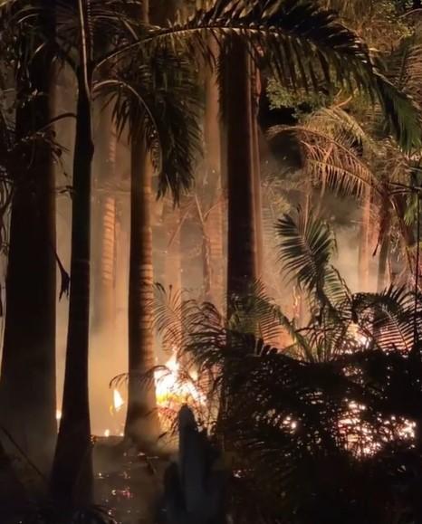 incendio forestal en Anzoátegui