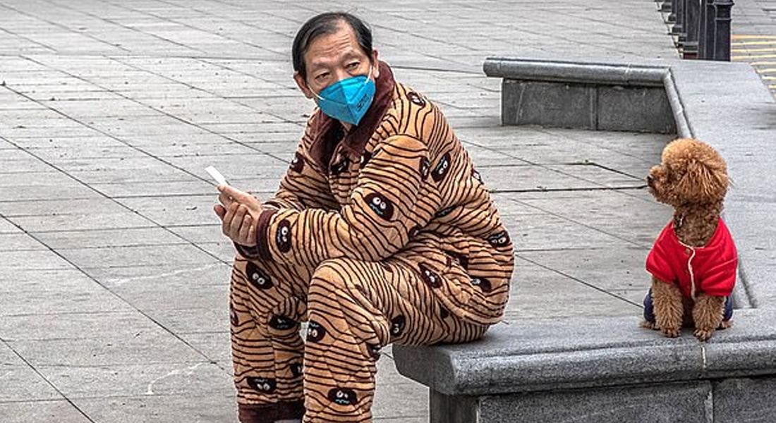 Shenzhen prohibió comer perros y gatos mediante ley tras pandemia del covid-19
