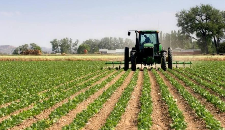 Escasez de combustible afecta al sector agroalimentario en Venezuela