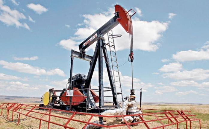 Sigue en picada: barril de petróleo venezolano cerró la semana en 8 dólares