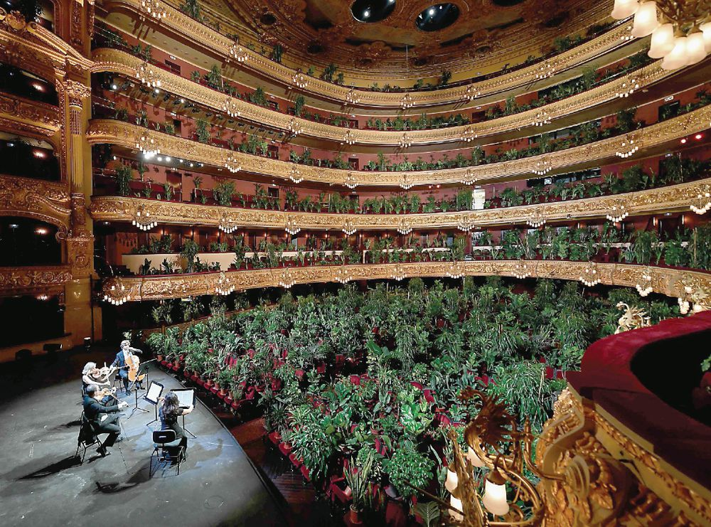 Concierto - Teatro