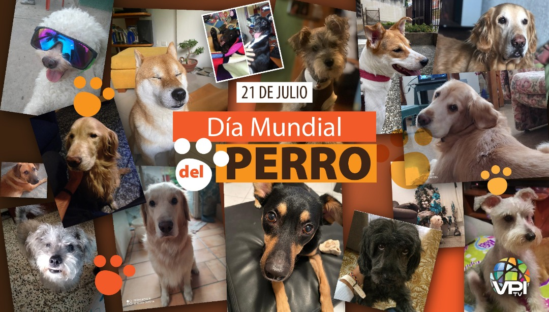 Día Mundial del Perro
